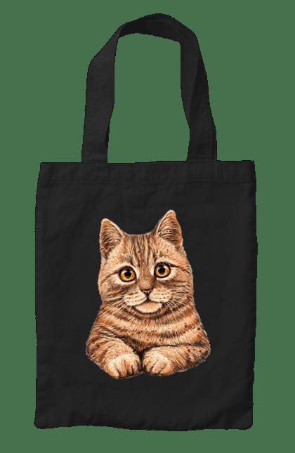Сумка з принтом Котик Портрет. Кіт, котик, мило. CustomPrint.market