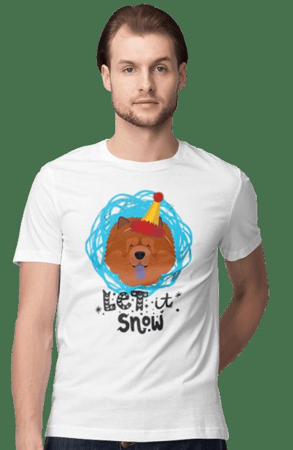 Рудий пес з ковпаком