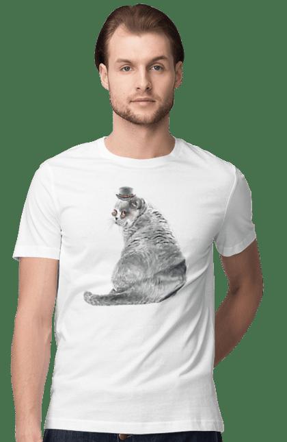 Футболка чоловіча з принтом Сірий кіт в капелюсі. Кіт, котик.