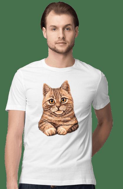Котик Портрет