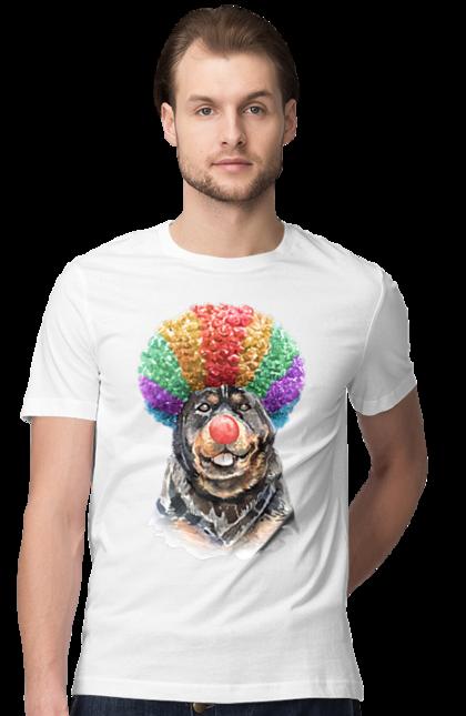 Ротвейлер клоун
