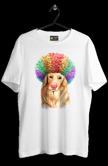 Лабрадор клоун