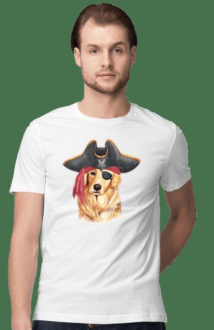 Лабрадор пірат