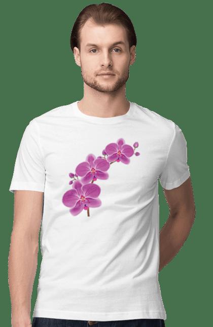 Футболка чоловіча з принтом Гілка Орхідеї. Квітка, орхідея. BlackLine