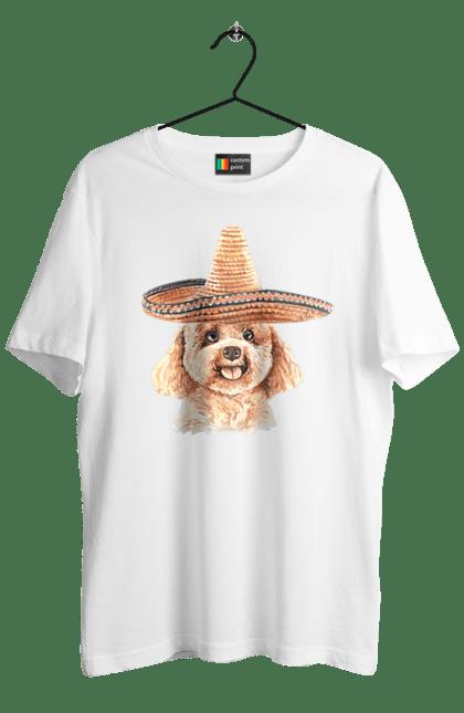 Волохатий пес Мексиканець