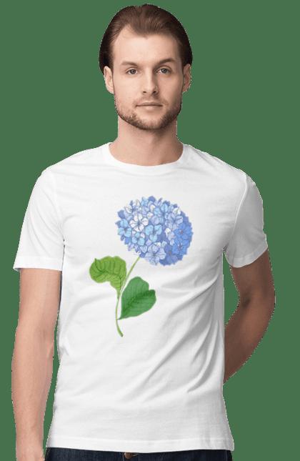 Квітка Гортензія Блакитна