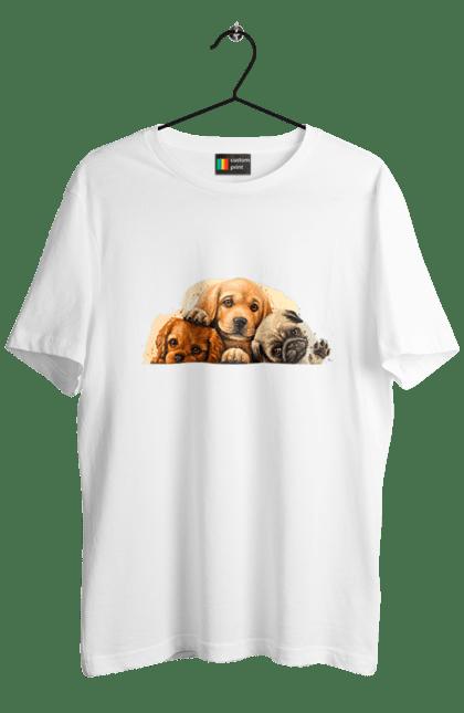 Собачки Арт