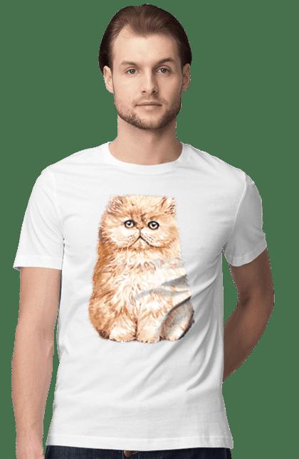 Футболка чоловіча з принтом Руде котеня. Кіт, котеня, котик, рудий.