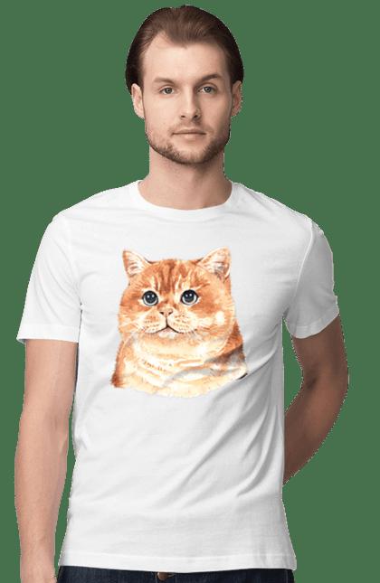 Футболка чоловіча з принтом Руде пухнасте котеня. Кіт, котеня, котик, рудий.