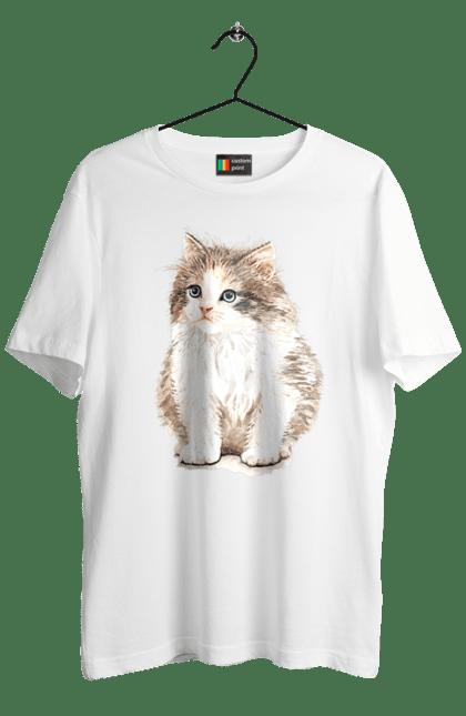 Котеня біло-сіре