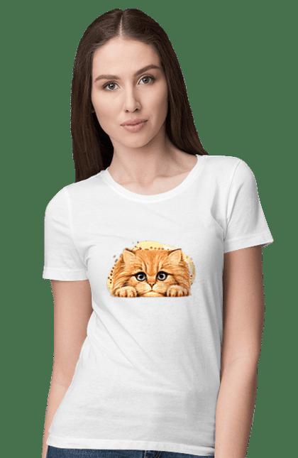 Рижий Кіт Арт